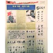 亚洲时报刊登的作品
