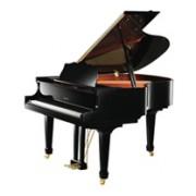 三角钢琴 R12